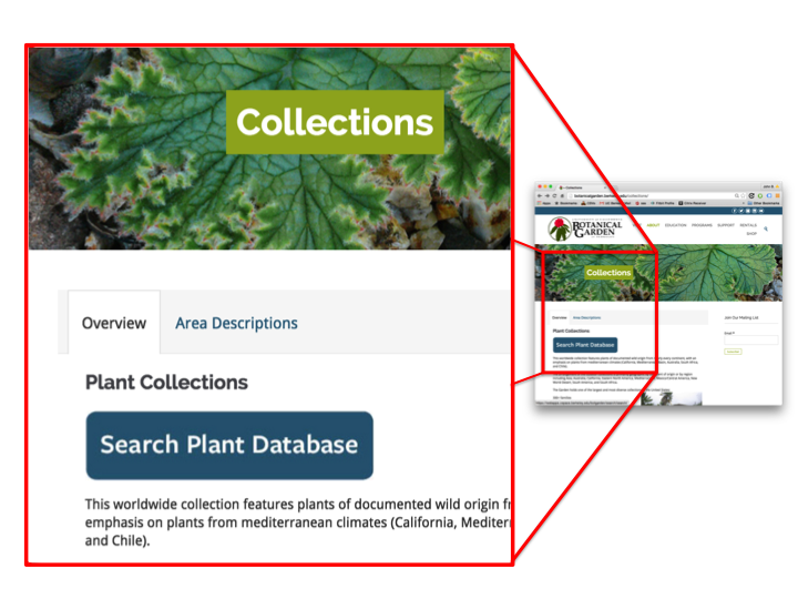 Screenshot of the Search Plant Database link on the UC Botanical Garden portal